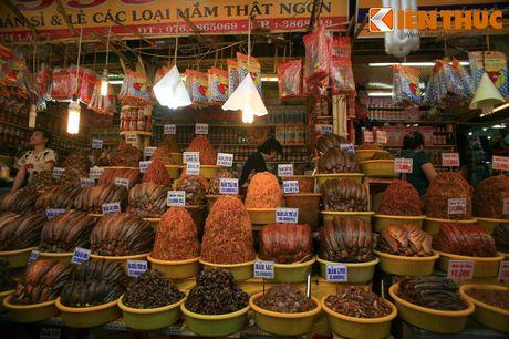 Kham pha xu so mam ca co mot khong hai cua Viet Nam - Anh 4