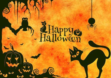 Le hoi Halloween qua cac con so cuc an tuong - Anh 2