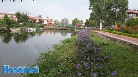 Huyen Thanh Tri: Mo hinh thi dua thiet thuc, hieu qua - Anh 1