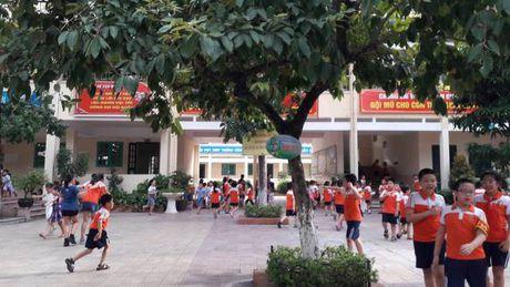 Truong tieu hoc Nam Thanh Cong (Dong Da, Ha Noi): Lam thu, tai tro hay buong long quan ly? - Anh 1