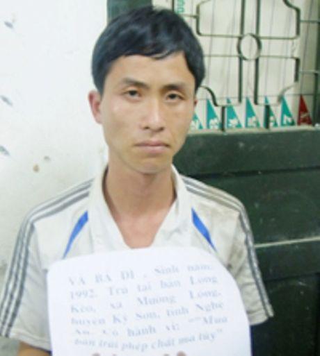 Bi bat, doi tuong thao chot luu dan chong tra cong an - Anh 1