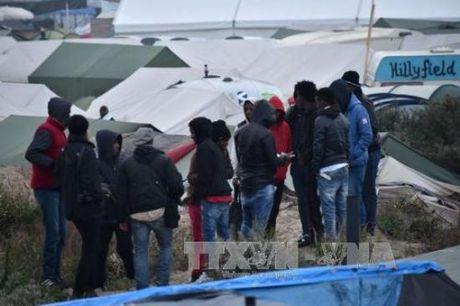 Phap dua hon 2.000 nguoi ti nan ra khoi trai Calais - Anh 1