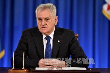 Serbia khang dinh khong cong nhan doc lap cua Kosovo - Anh 1