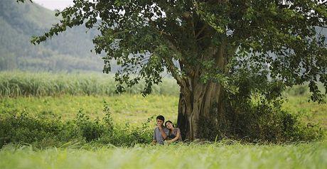 Khai mac Lien hoan phim Quoc te Ha Noi lan thu IV - Anh 2