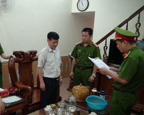 Vi sao nguyen giam doc Cong ty XSKT Ha Giang bi bat? - Anh 1