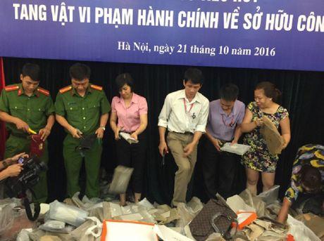 Bo KH&CN se ky luat nguoi 'hoi cua' trong qua trinh tieu huy tang vat - Anh 1