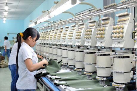 Chong chuyen gia tai khu vuc FDI: Can thu hep khoang cach uu dai thue - Anh 1