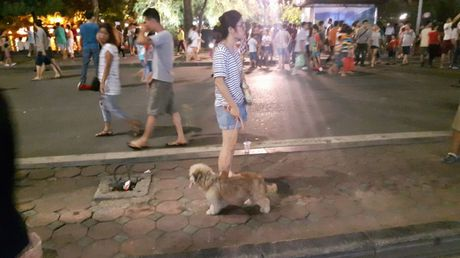 Bat chap lenh cam, cho khong ro mom van 'tung hoanh' tai pho di bo - Anh 3