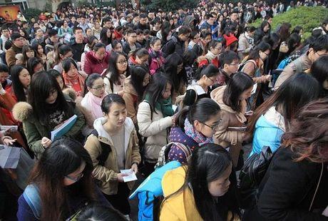 Nghet tho gan 8000 nguoi chen chan ung tuyen cho 1 vi tri… tiep tan - Anh 2