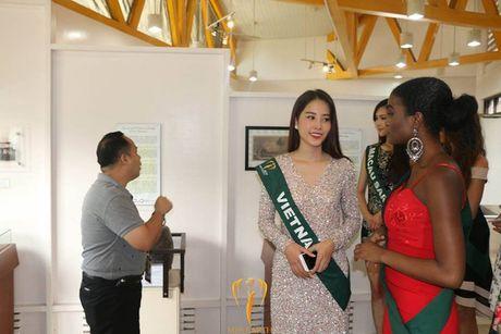Nam Em duoc chuyen gia sac dep xep hang cao tai Miss Earth - Anh 7