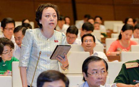 Khong cho phep Hoi lam nhung viec thay co quan quan ly Nha nuoc - Anh 2