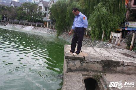 Ho Van Quan boc mui hoi thoi, dan khong dam ra khoi nha - Anh 6