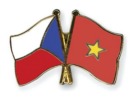 Thanh pho Ho Chi Minh to chuc ky niem Quoc khanh Cong hoa Sec - Anh 1