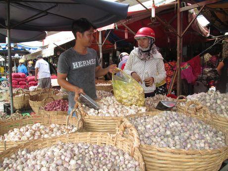 Lo hang Trung Quoc va ASEAN tran vao - Anh 1