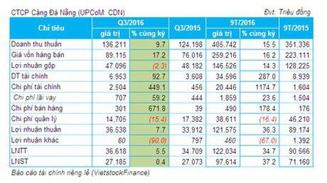 Cang Da Nang: Lai truoc thue 9 thang 122 ty dong, dat 87% ke hoach - Anh 1