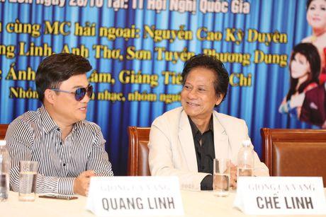 Vi sao Quang Linh 'so' lam liveshow? - Anh 3