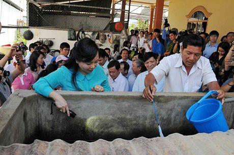 Truong hop thu 7 nhiem virus Zika, Bo Y te to chuc chien dich diet muoi lan 2 - Anh 1