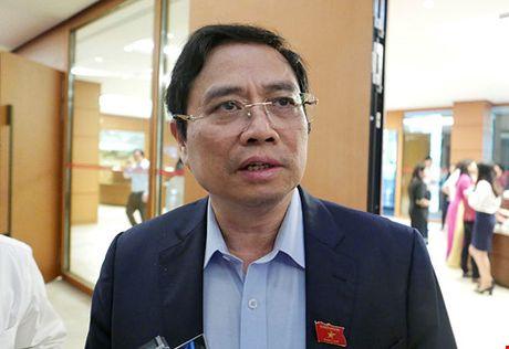 Trung uong dang xay 'long quy che de nhot quyen luc' - Anh 1