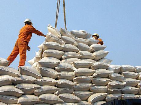 Viet Nam xuat khau 368 nghin tan gao trong thang 10 - Anh 1