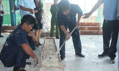 Lien tuc phat hien nga voi nhap lau trong go tu Chau Phi - Anh 2