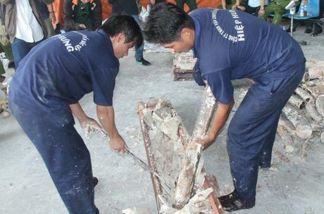 Lien tuc phat hien nga voi nhap lau trong go tu Chau Phi - Anh 4