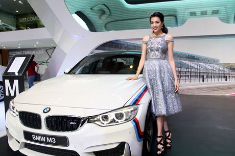 Pham Huong cung dan nguoi dep do dang tai VIMS 2016 - Anh 5