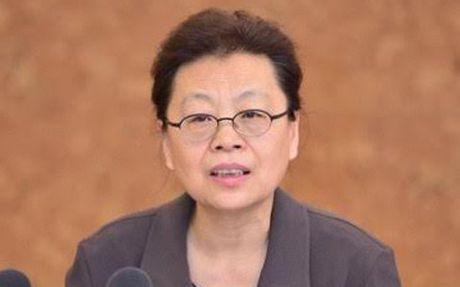 Nguyen Pho Bi thu thanh uy Bac Kinh bi khoi to vi tham nhung - Anh 1