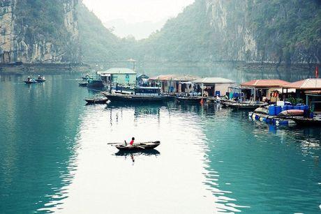 Viet Nam vao top diem du lich sinh thai than thien nhat the gioi - Anh 1