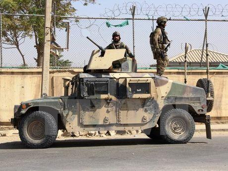 Afghanistan xac nhan hai thu linh Al Qaeda bi tieu diet - Anh 1