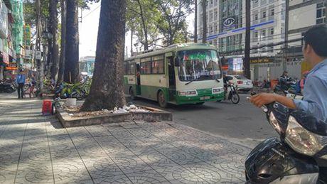 Va cham giao thong, tai xe xe bus dam nguoi trong thuong - Anh 1