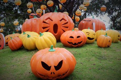 Pho Sai Gon moi la ben nhung qua bi khong lo chao Halloween - Anh 1