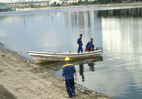 Thong tin chinh thuc ve viec ca chet tai ho Linh Dam - Anh 1