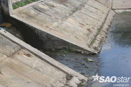 Gan 2 ta ca chet o ho Linh Dam, nguoi dan van hon nhien rua rau - Anh 13