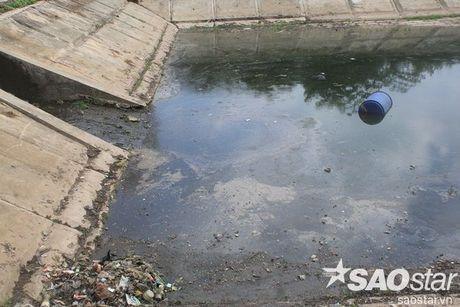 Gan 2 ta ca chet o ho Linh Dam, nguoi dan van hon nhien rua rau - Anh 15