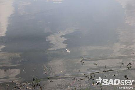 Gan 2 ta ca chet o ho Linh Dam, nguoi dan van hon nhien rua rau - Anh 16