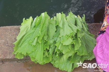 Gan 2 ta ca chet o ho Linh Dam, nguoi dan van hon nhien rua rau - Anh 7