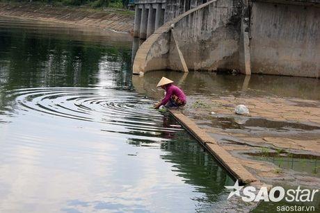 Gan 2 ta ca chet o ho Linh Dam, nguoi dan van hon nhien rua rau - Anh 8