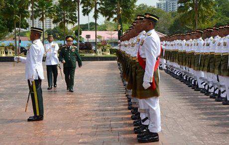 Tang cuong hop tac quoc phong gop phan thuc day quan he Doi tac chien luoc Viet Nam-Malaysia - Anh 3