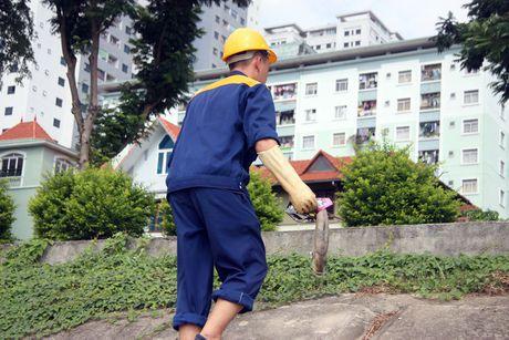 Ca lai chet nhieu o ho Linh Dam - Anh 6