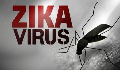 Tang cuong tam soat benh do virus Zika tai TP HCM - Anh 1