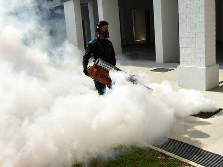 Myanmar ghi nhan truong hop dau tien nhiem virus Zika - Anh 1