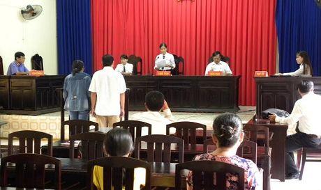 Vu pha rung tai Phu Quoc bi huy an lan 2 - Anh 1