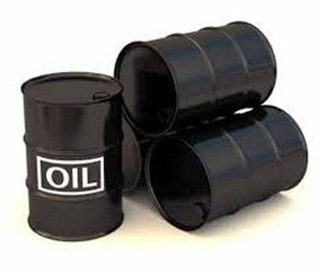Viec cat giam san luong cua OPEC se co tac dong manh nhat tu thang 2/2017 - Anh 1