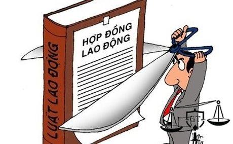 Don phuong nghi viec co duoc huong tro cap khong? - Anh 1