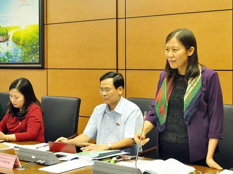 De nghi xem lai viec boi thuong cho ong Nen - Anh 1