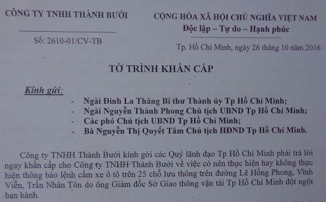 'Cam duong khong nham 'triet' hang xe Thanh Buoi' - Anh 2