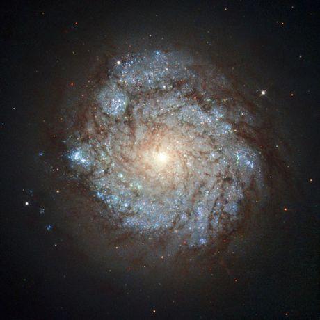 Thien ha NGC 278 'rat mau', khong hien lanh nhu ban nghi - Anh 3