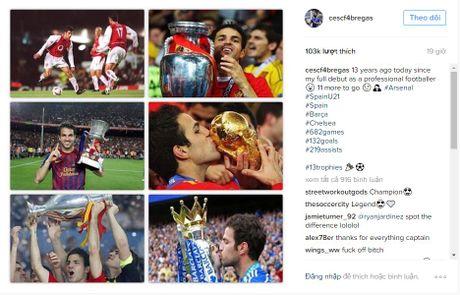 Fabregas lai gay buc xuc vi khong coi Arsenal ra gi - Anh 1