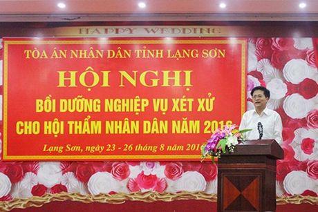 TAND tinh Lang Son: Hoan thanh xuat sac nhiem vu cong tac nam 2016 - Anh 1
