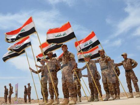 Lien minh Shi'ite o Iraq tham chien tai Syria giup Tong thong Assad - Anh 1